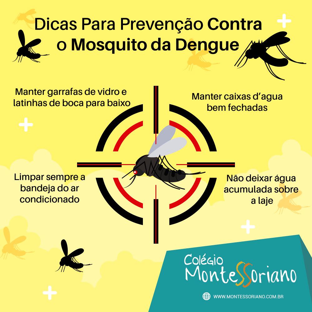 19 Dicas Para Prevencao Contra O Mosquito Da Dengue Colegio